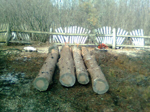 Timber falling & bucking subcontractor (Edson/Hinton area)