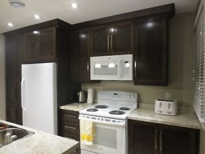 Newly renovated - 2 minute walk to MUN - available immediately