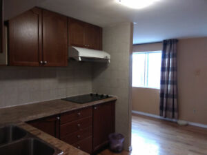New renovated one bedroom rent near Yorkdale Mall female