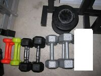 HeX Dumbells gym weights exercise