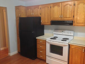 Large bright 3 bedroom close to Avalon Mall/MUN - Avail. now