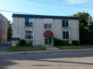 1-bedroom apartment for rent with east-facing sliding door Kingston Kingston Area image 1