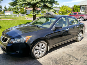2010 Honda Accord Berline