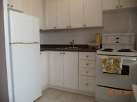 Spacious, Very Clean Bachelor Unit, 100 Cosburn Ave