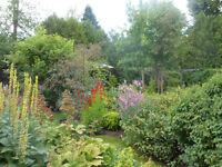 Visites de jardins cet été