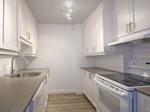 1 bedroom | 1300$/month |  Downtown Montreal | December 1st