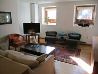 Bright and sunny basement in the heart of the city!