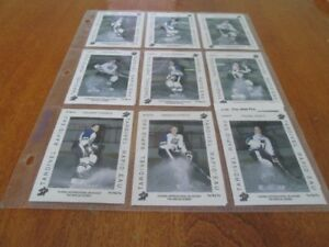 1992 QUEBEC PEE WEE PRO TARDIVEL RAPID'EAU COMPLETED SET (17 )