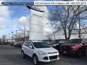 2013 Ford Escape SEL   - $142.68 B/W