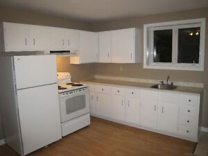 Large 2 Bedroom Basement apt. with Laudry Room and Storage