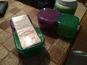 21 day fix containers