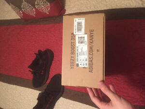 Ds size 8 YEEZY pirate bred
