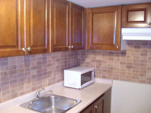 One Bedroom Basement Apartment in Neilson & Sheppard
