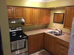 Kitchen cabinets, counter, sink and taps