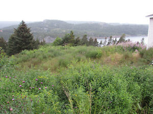 …1.4 ACRE OCEANFRONT..INCREDIBLE VIEWS..AVONDALE. St. John's Newfoundland image 2