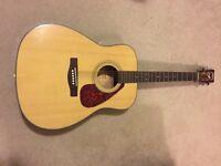 Guitar brand new