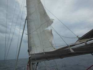 WANTED: Used, Old or Torn Sails