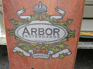 Arbor Longboard - Great Shape