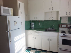 Clean & Quiet One Bedroom Apt available Jan 1st in Old South London Ontario image 5