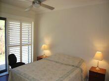 Comfortable room in beautiful Maleny, Sunshine Coast Hinterland Maleny Caloundra Area Preview