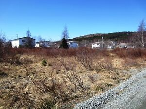 2-10 Hierlihy Place - Bay Roberts, NL - MLS# 1118980 St. John's Newfoundland image 8