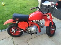Honda z50 monkey bike barn find