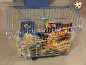 Hamster cage with bag of food