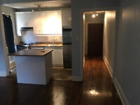 Need a roommate (shared room) for a Studio Apartment in the Beac