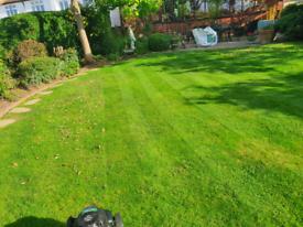 Garden maintenance services / driveway, patio cleaning, HERTFORDSHIRE