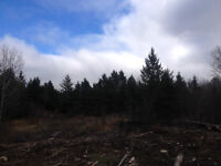 VACANT LAND - 136 ACRES