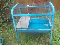 1 cages for sale