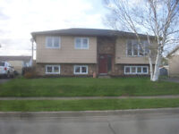 Moncton North End- Heat, lights& snow removal included-Nice Unit