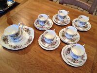 Elizabethan wild bramble China vintage tea set