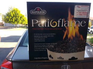 Napoleon Outdoor (Natural) Gas Fire pit