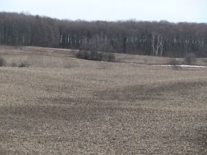 100 ares mature wood +60 acres workable hope twnship