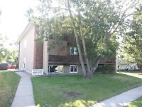 2 Large Bedroom Apartment for rent - Leduc