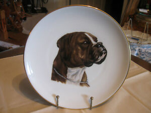 ABSOLUTELY GORGEOUS 8-in. BOXER DOG PORTRAYAL CHINA PLATE