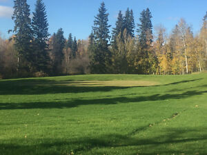 Campground/Golf Course/Restaurant for sale 4 miles to Wabumun