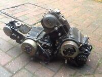 Pit bike engines x2