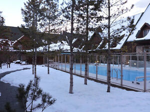 Mountain Chalet with Pool & Hot Tub - Pet Friendly