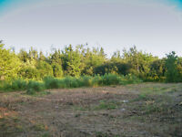 SHEDIAC:  1.5 ACRES (PRE APPROVED BUILDING LOT)