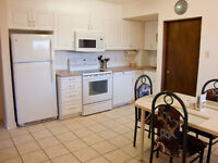2-BR, All Inclusive Main Floor Suite Near Edmonton Tr, 16th Ave