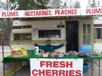 Outdoors Summer Roadside  Fruit Sales