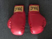 Everlast boxing gloves! NEW