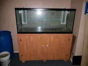 120 Gallon Saltwater or Freshwater