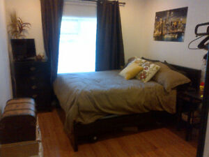 Mohawk student roommates needed