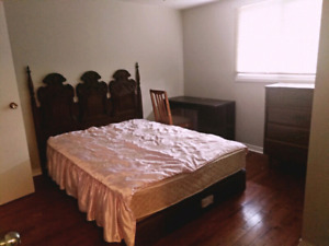 Large furnished room for rent all utilities inc bank St /walkley