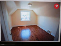Furnished,Specious Top Floor Room for Rent@ Kennedy& Lawr.Oct'15