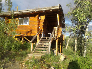 Cabin with Lakeview for rent