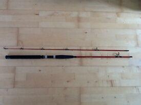 Fishing Rod - Spinning - Shakespeare Firebird XT